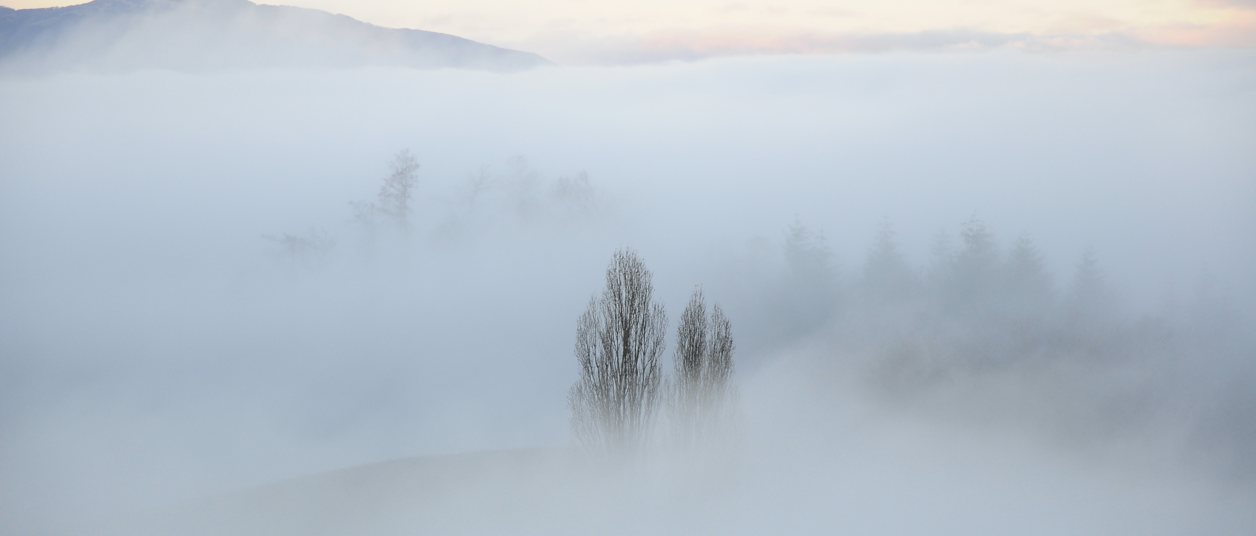 La nebbia ai piedi di Montefenaro